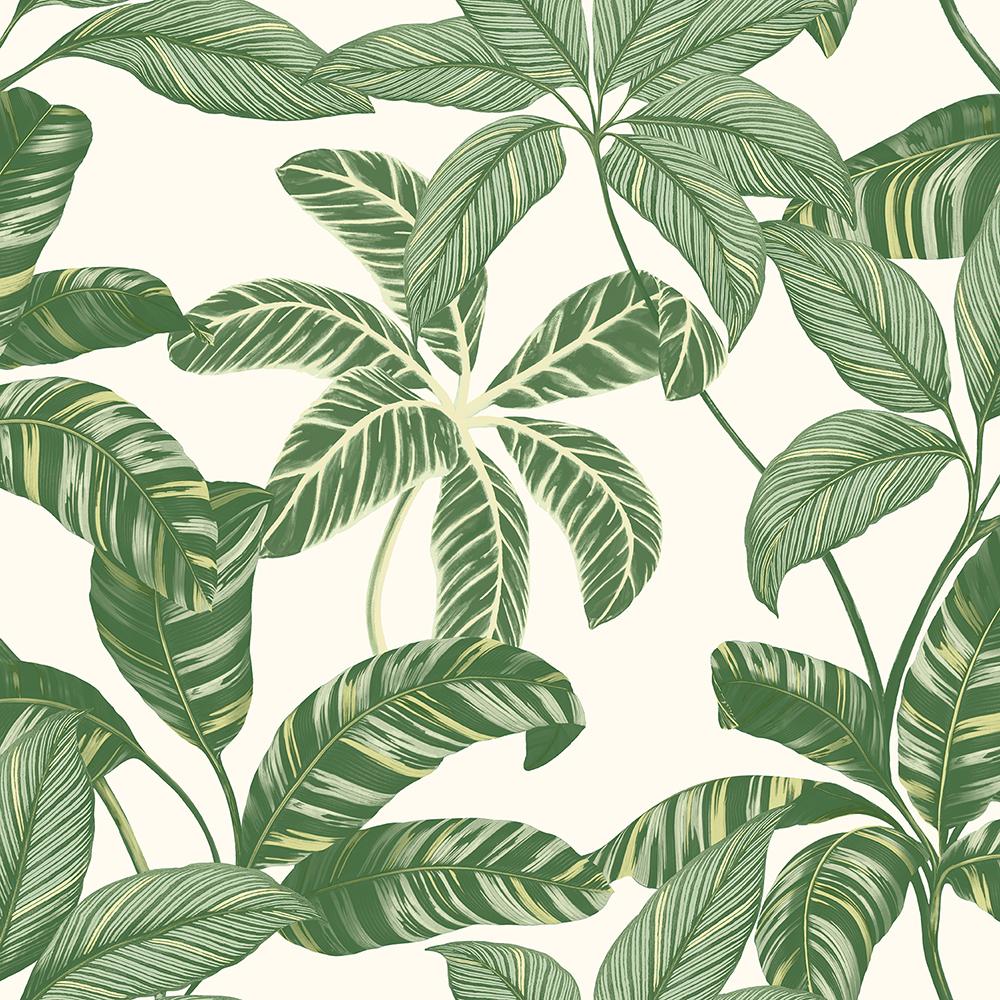 Papel de Parede Vinílico Contemporâneo Natural Folhagens Verde